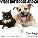 service bath dogs and cats door to door