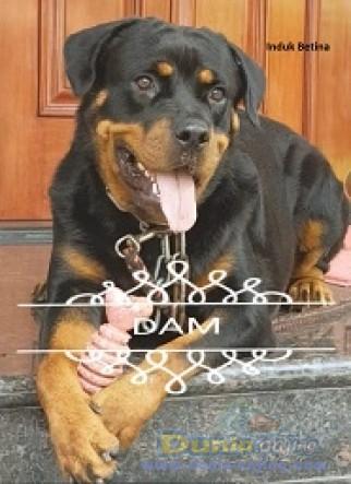 Jual Anjing Rottweiler  - Anjing Khusus Peranakan Juara Foto Kelima
